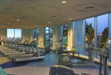 Dubai hoteles con playa privada: opiniones