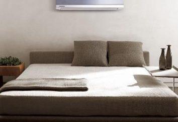 Tempere com ar condicionado – não um prazer barato