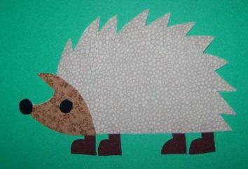 "Application ""Hedgehog"" aus verschiedenen Materialien"