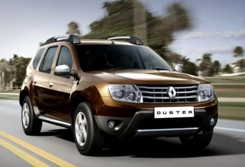 """Revisão do orçamento """"o francês"""" – Renault Duster: as características de carros"""