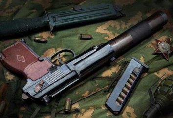 Gun silencieux PB: Review, caractéristiques et commentaires