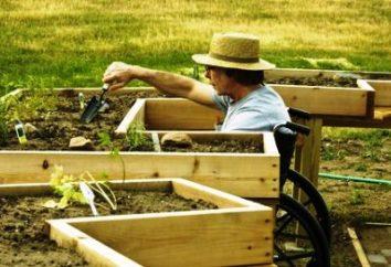 Come fare i letti in giardino. Come fare un letto in giardino