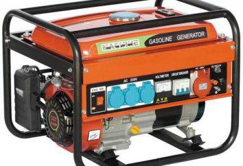 Przetwornica benzyna do 3 kW: Opinie producentów