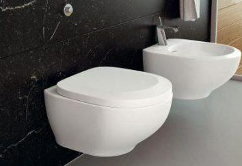 Dimensioni servizi igienici con installazione, configurazione, recensioni sospeso