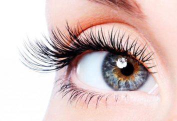 Elma – aceite para las pestañas y las cejas. Los comentarios, composición