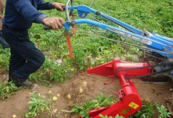 Pommes de terre pour les motoculteurs MTZ: description de l'appareil, et commentaires