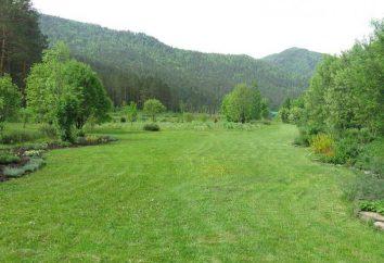 Giardino Gorno-Altaisk botanico: Dove si trova, la storia di origine, la descrizione