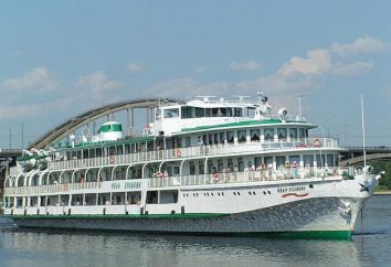 """Ship """"Ivan"""" Kulibin: opiniones y fotos de los turistas"""