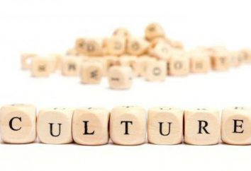 Che cosa è culturale? Studi Culturali di comunicazione con le altre scienze