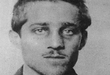 Gavrilo Princípio e seu papel na Primeira Guerra Mundial
