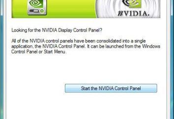 pannello di controllo NVIDIA – un attributo obbligatorio di prodotti di questo produttore.