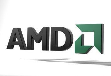 AMD Catalyst Control Center: impostazione dei giochi. Come configurare correttamente il centro di controllo Catalyst AMD per il gioco su un computer portatile?