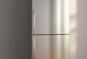 Réfrigérateur BOSCH KGN39NW19R: avis des propriétaires, les spécifications et le manuel utilisateur