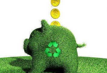 tasse ambientali: tariffe, l'ordine di raccolta. Modulo per il calcolo tassa ambientale
