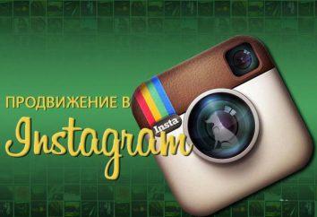 """Niezawodne narzędzia do promowania swojej firmy. SocialKit – najlepszy program dla """"Instagram"""""""