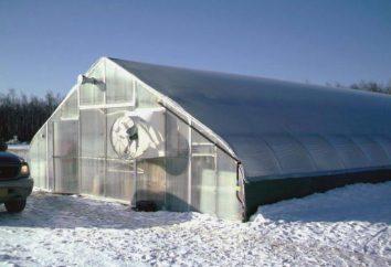 Como construir uma estufa para o cultivo de inverno de legumes com as mãos: a tecnologia do dispositivo, aquecimento e comentários
