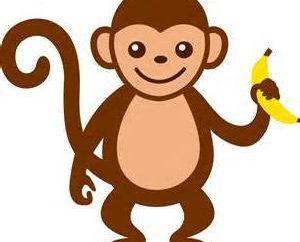Por que o sonho de um macaco: sonnik explicar