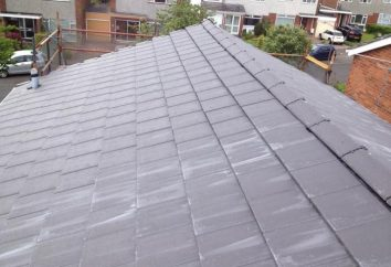 Ce qui devrait être une maison de toit en pente?