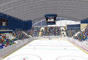 Uma pista de patinação coberta em Novosibirsk: endereços e comentários. Onde a patinar em Novosibirsk?
