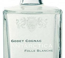 Qu'est-ce que le cognac blanc: la description des propriétés uniques du produit inhabituel