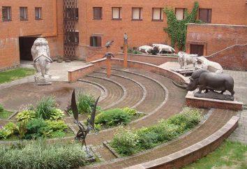 Dinozaury w muzeach w Moskwie: co, gdzie i kiedy