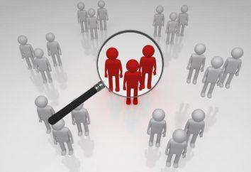 GlobalTestMarket: comentários e papel em pesquisa de marketing moderno