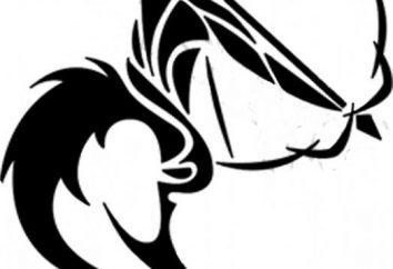 Prawdziwa zgodność Sagittarius mężczyzn i kobiet Pisces
