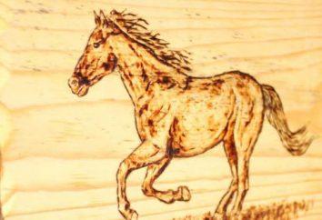 """Lekcje diy: jak zrobić pamiątkę """"Koń"""" własnymi rękami"""