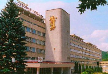 Valoración: moteles Zheleznovodsk – tratamiento y descanso