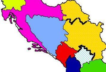 Jugoslávia, dividiu-se em que estado? Quantos países desintegraram a Iugoslávia