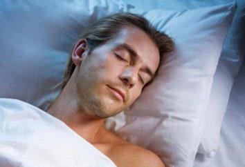 Najlepszy czas, aby spać w ciągu dnia – cechy i zalecenia lekarzy