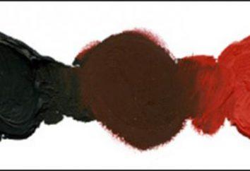 Jakie kolory mieszać, aby uzyskać brązowy? Odcienie brązu