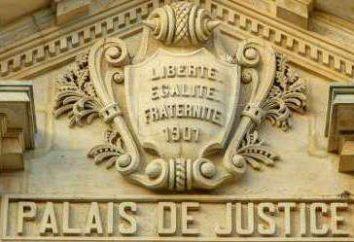 El sistema judicial de Francia es un esquema. Tribunales especializados. El Código Penal de Francia