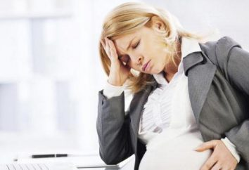 Il tablet della testa durante la gravidanza all'inizio della gravidanza