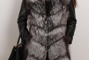 Vest Fuchs. Regeln für die Auswahl und Kombination mit anderen der Garderobe
