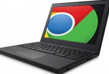 ¿Cuál es el navegador más popular?