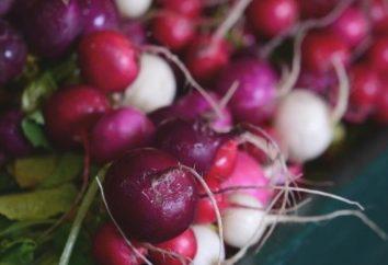 Rojo, redondo y rábano picante: el más útil que es para su salud?
