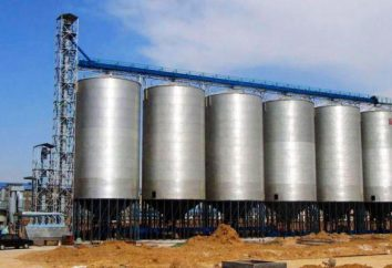 Budowa, remont i modernizacja wind w Rosji