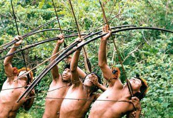 Dzikie plemiona Amazonii. Współczesne życie plemion Amazonii