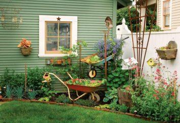 Ogród Wagon własne ręce: fotografie, instrukcje