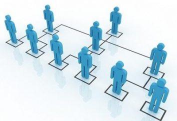 MLM – co to jest? Udanego biznesu lub oszustwo?