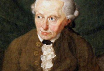 """Kant, """"Critique de la raison pure"""": la critique, le contenu"""