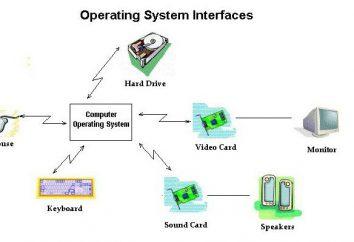 Qual è il nome del pacchetto software che controlla il funzionamento del computer e fornisce l'interfaccia tra l'uomo e computer?