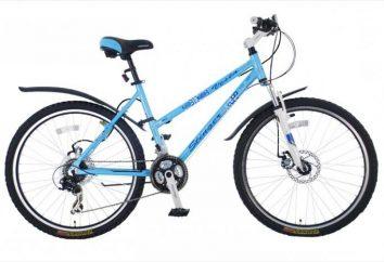 Wybór roweru i ciekawych opinii. Rowery Stinger oraz opis ich właściwości