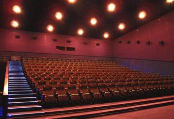 """""""Mirage Cinema"""" en Veterans (St. Petersburg) – este es uno de los más modernos cines-multiplexes"""