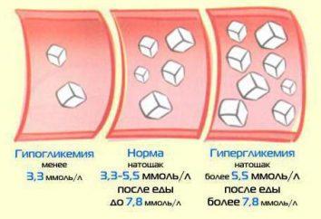 Hiperglucemia: los síntomas, la medición de los niveles de azúcar en la sangre, el tratamiento y primeros auxilios