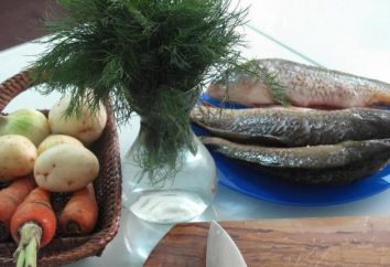 Minestra Ricetta slava di pesce di fiume