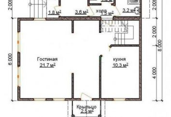 tijolo fechado para casa de tijolos: design, autorização, construção