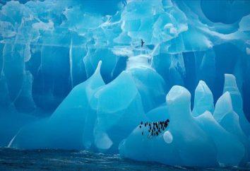 Die Antarktis wurde von einer Expedition von den Seeleuten Bellingshausen und Lazarev entdeckt. Die Geschichte der Entdeckung der Antarktis