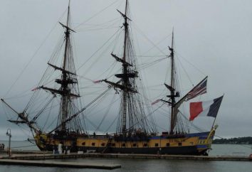 Die Struktur des Schiffes. Typen und Zweckschiffe